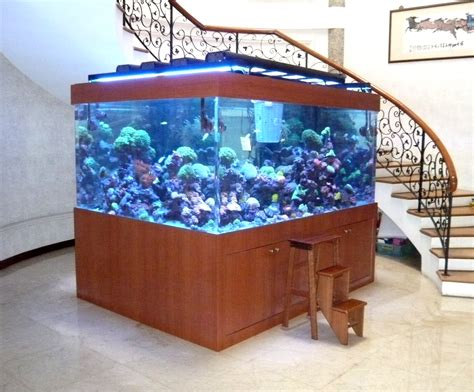 Acrylic Aquarium acrylic marine reef tank the best collection of home