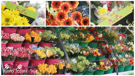 franchising fiori con flora folies puoi avere un lavoro appagante creativo