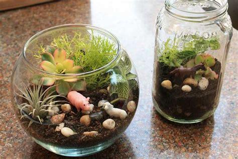 earth day craft  kids   mini terrarium marin