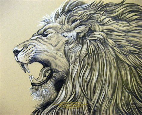 lion roaring tattoo designs pencil drawings of jesus roar by houseofchabrier