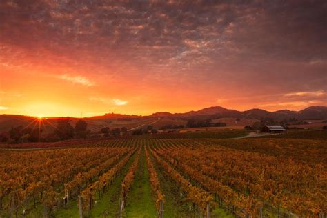 Photo Napa Valley by Napa Valley California Map Facts Location Best Time
