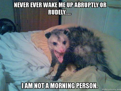 Not A Morning Person Meme - never ever wake me up abruptly or rudely i am not a