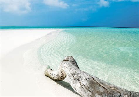 Catok Cocco cayo coco cayo guillermo travel deals air canada vacations