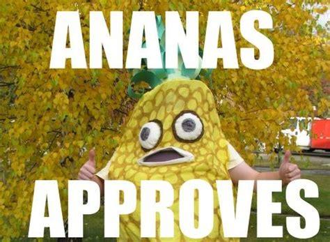 Ananas Pineapple Meme - je suis un ananas know your meme
