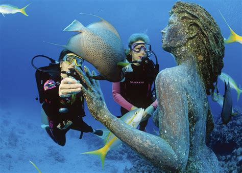 House Of Scuba by Dive Into Cayman Islands With Legends And Lions