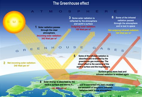 green house effect greenhouse effect wikipedia the free encyclopedia share