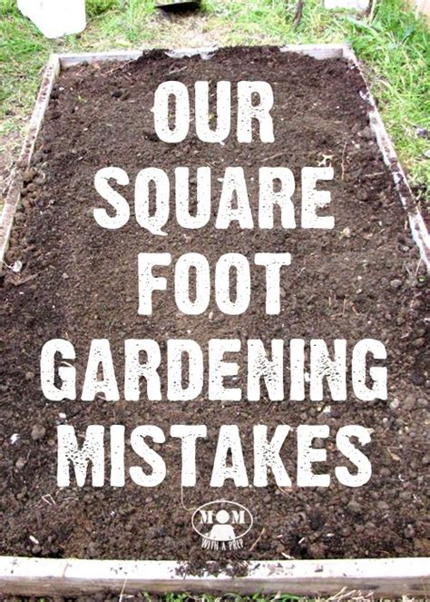 squar foot best 25 square foot gardening ideas on square