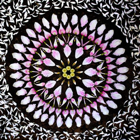 new flower mandalas by kathy klein colossal