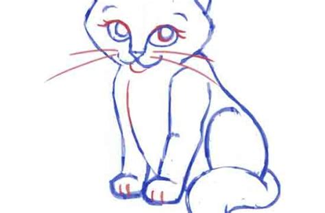 cat easy simple cat drawings www imgkid the image kid has it