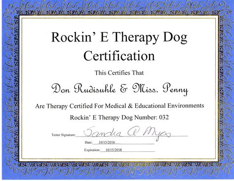 therapy certification degree and credentials verification don rudisuhle