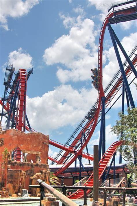 Busch Gardens Vertical Drop Sheikra Busch Gardens Ta Fl Vertical Drop