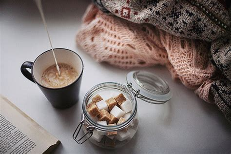 Chocolate Ption 1 In Winter by Books And Chocolate Www Pixshark Images