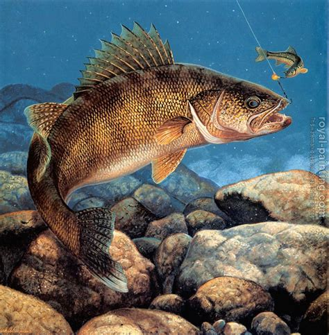stinger hooked walleye by mark susinno oil painting