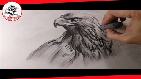 Drawing Of A A