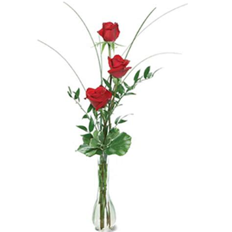iowa state flower auto design tech all india florist send flowers to india florists india