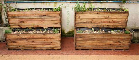 orto in cassetta orto in cassetta come coltivare le verdure in poco spazio