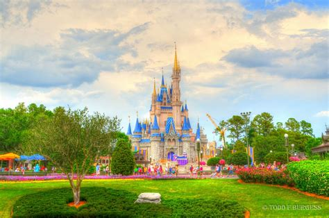 disney wallpaper orlando walt disney world resort disney orlando floride florida