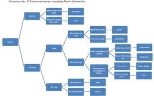 arthropods worksheet fioradesignstudio