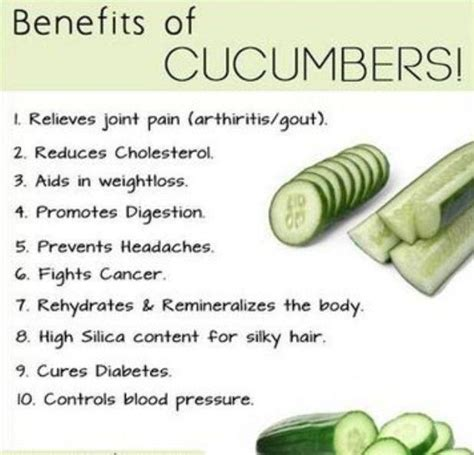 benefits of cucumber benefits of the cucumber body soul pinterest