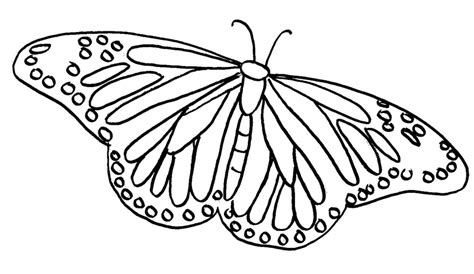 coloring pages of big butterflies butterfly coloring pages learn to coloring