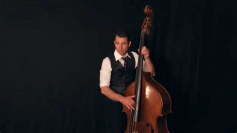 dog house bass double bass insane upright bass performance by stef barral youtube