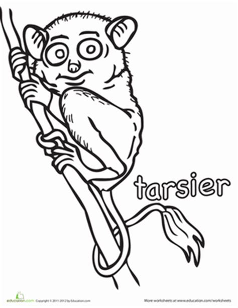 coloring books for adults in the philippines tarsier worksheet education