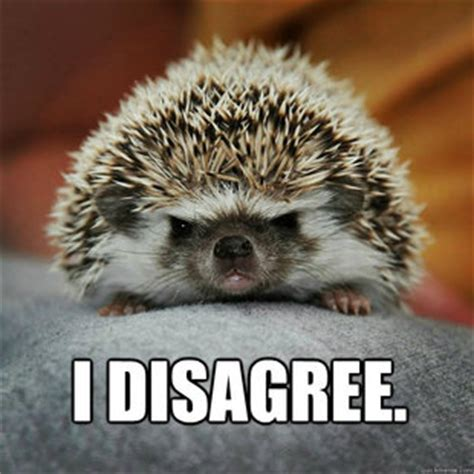 Hedgehog Meme - notice emergency server maintenance 4 11 2013 page 22