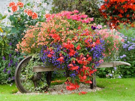 container gardens colorful perennials flowers for containers