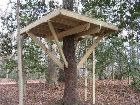 how to build a treehouse for your backyard diy tree house my treehouse 5 steps