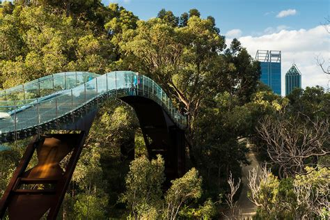 Kings Park Botanic Gardens Perth Wilczak Photography Park And Botanic Garden Perth