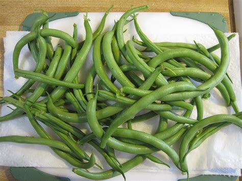 green beans from plant to plate in 40 minutes