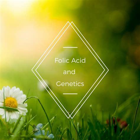 Mthfr Folic Acid Detox by Folic Acid Supplementation And Your Genes Genetic Lifehacks