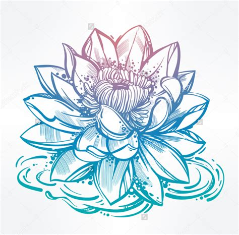 lotus flower drawing images lotus flower images drawings www imgkid the image