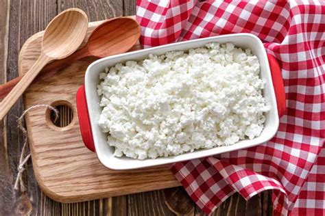 cottage cheese high in protein 10 high protein foods with the least calories bembu