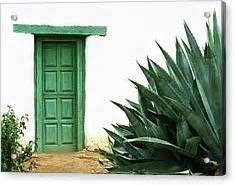 The Green Door Dallas by Green Door Photograph By Dallas Clites