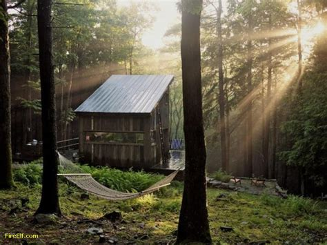 Forest Cabins by Forest Cabin Beaver Brook New York Interesting Places
