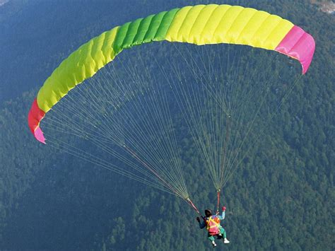 what color is my parachute the color of my parachute divorced