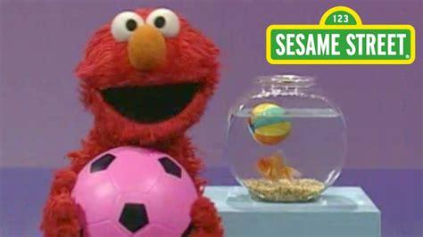 Elmo S | sesame street elmo s world play ball funnydog tv