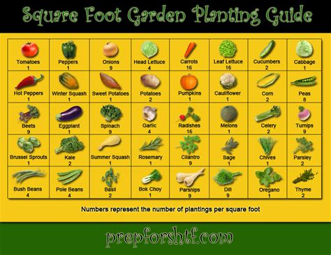 garden chart square foot gardening spacing chart quotes