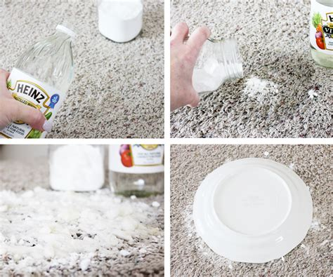 baking soda on rug 12 cleaning tips for pet parents