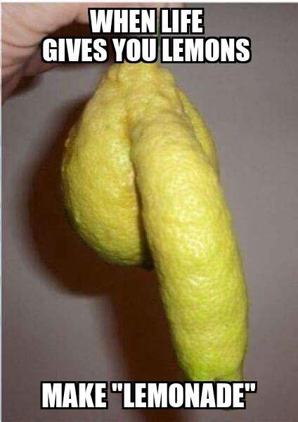 Lemon Memes - the best lemon memes memedroid