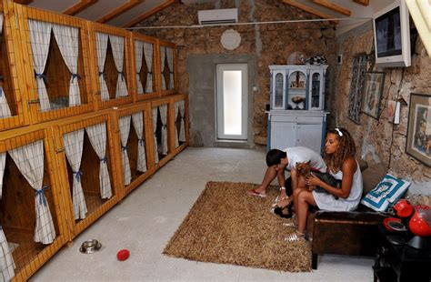 Blue Prints House by Dog Hotels In Croatia