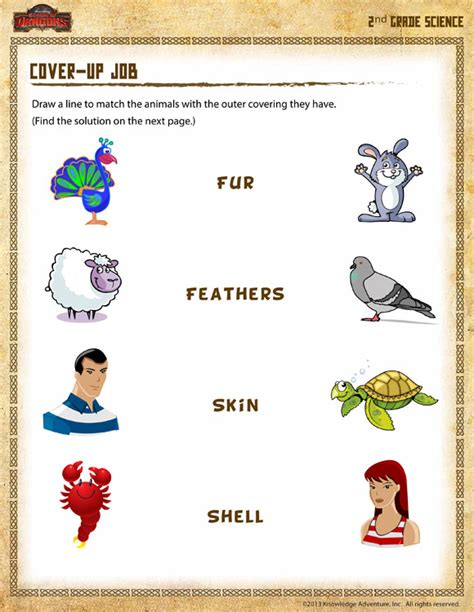 Second Grade Science Worksheets by Cover Up View Free 2nd Grade Science Worksheet