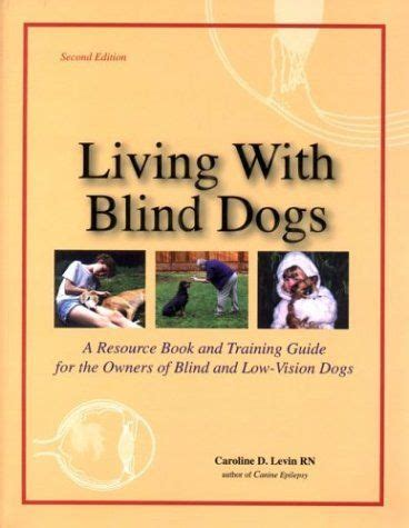 blind devotion books 12 best images about vision impaired adaptations on