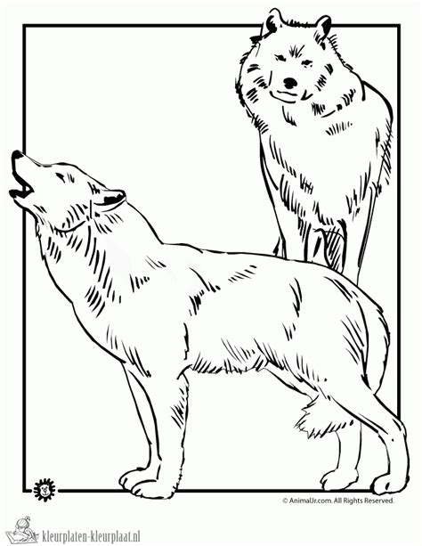 wolf puppies coloring pages kleurplaten wolf kleurplaten kleurplaat nl