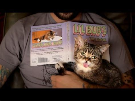 bub books lil bub gallery your meme