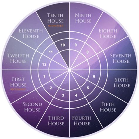 12 Astrology Houses Planets In Houses