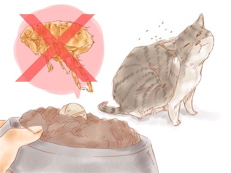 treating dog fleas in the house the best way to get rid of fleas in the house wikihow