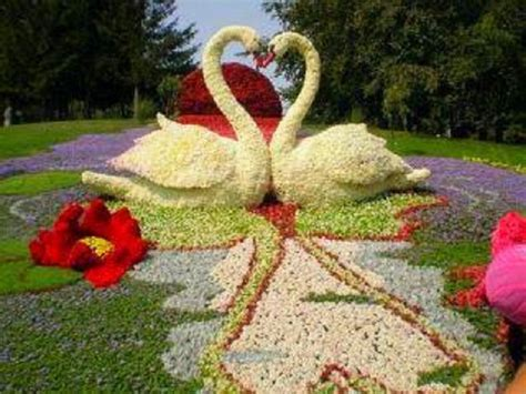 swan topiary creation flower sculptures fellowship of the minds