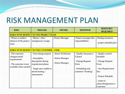 exle of a risk management plan template risk management plan exle template business